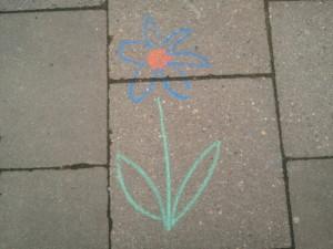 Blume auf Asphalt